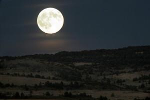1205237-luna llena
