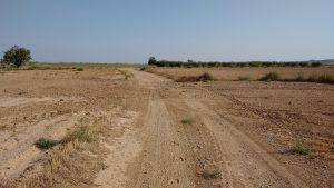 Caminos desapareciendo...