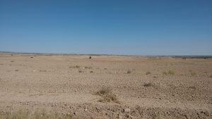 Campos de cultivo en Los Monegros
