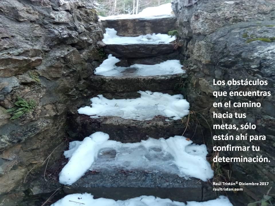 tu determinación